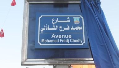 شارع محمد فرج الشاذلي