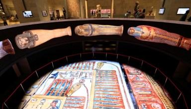 مصر معمل لدراسة الحمض النووي القديم