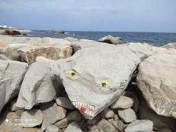 فسيفساء على صخور شاطئ المنستير 4