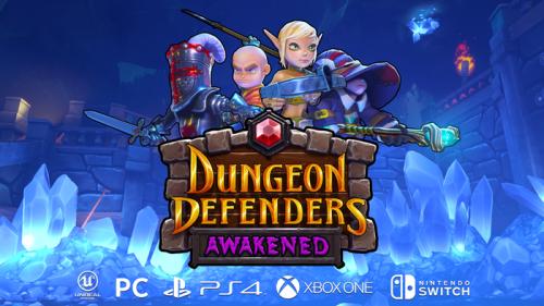 Dungeon Defenders Awakened Nintendo Switch