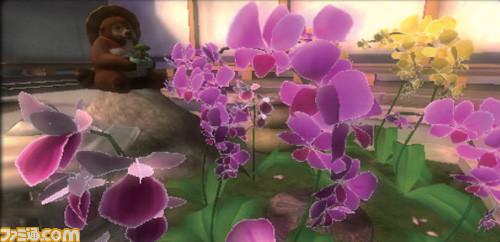 my_garden-1