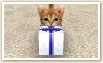 nintendogs_cats_r-16