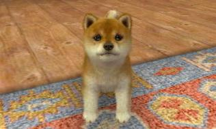 nintendogs__cats-14