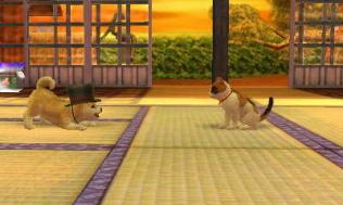 nintendogs__cats-7
