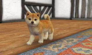 nintendogs__cats-13