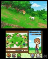harvest_moon_two_towns-5