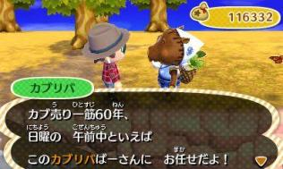 animal_crossing_new_leaf-14