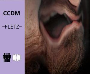 CCDM Fletz album cover