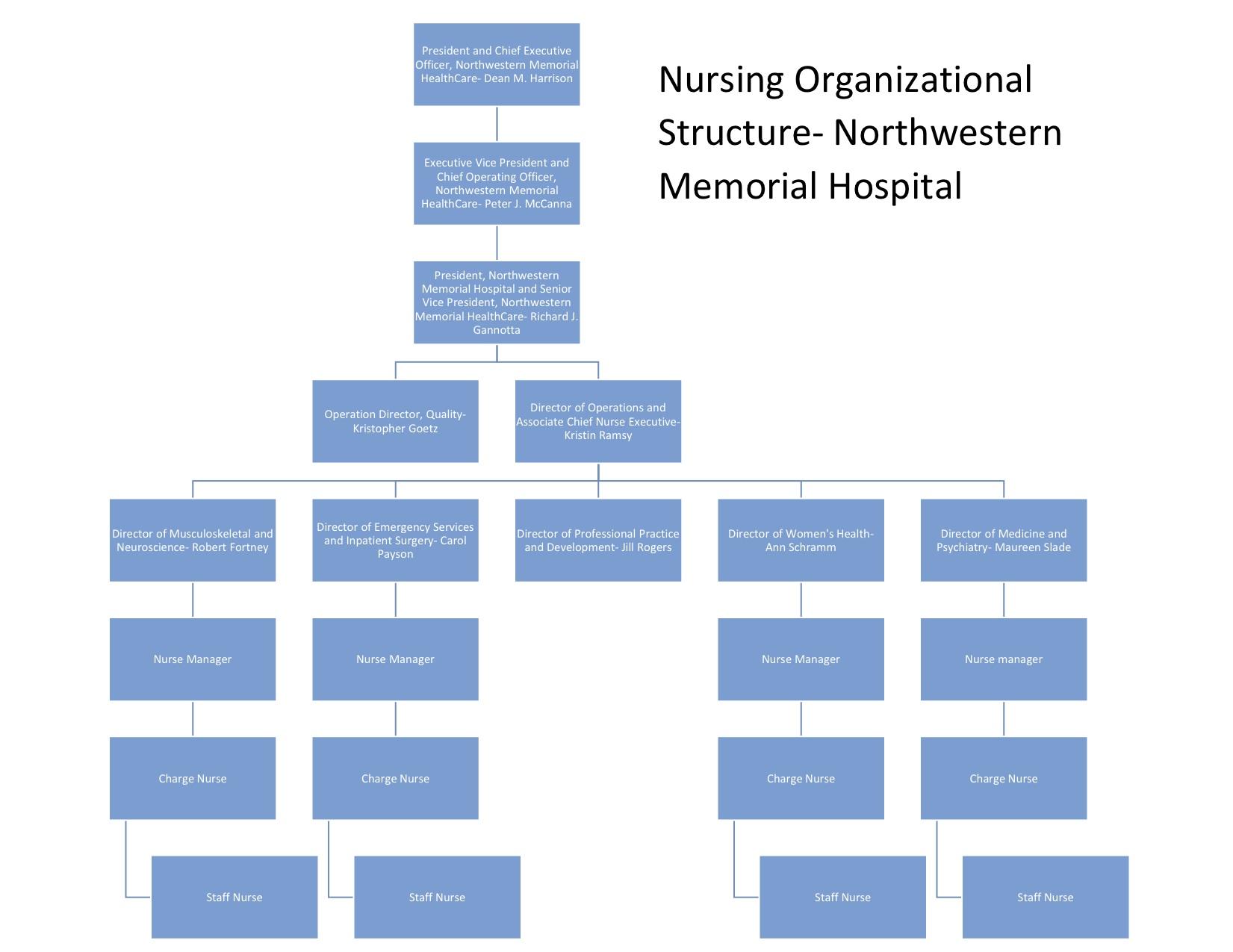 Structuralysis Of Northwestern Memorial Hospital Chicago Illinois