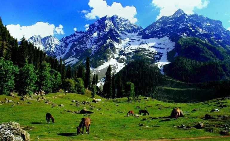 Beauty-of-Kashmir