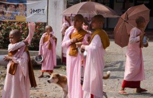 Female Buddhist Nuns