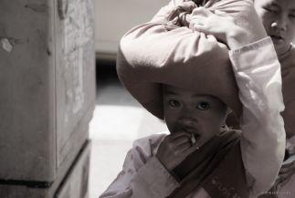 Young Buddhist Nun