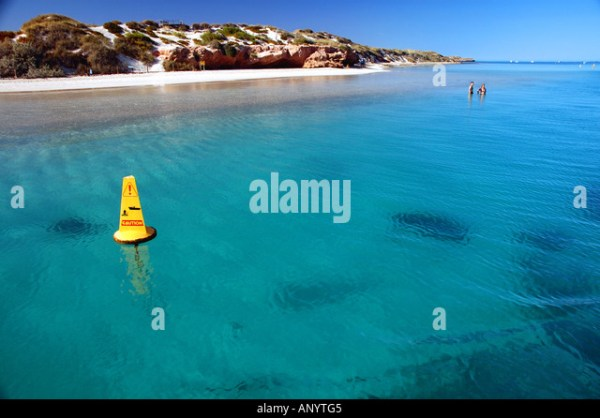 Boating Buoy Buoys Marine Stock Photos & Boating Buoy ...