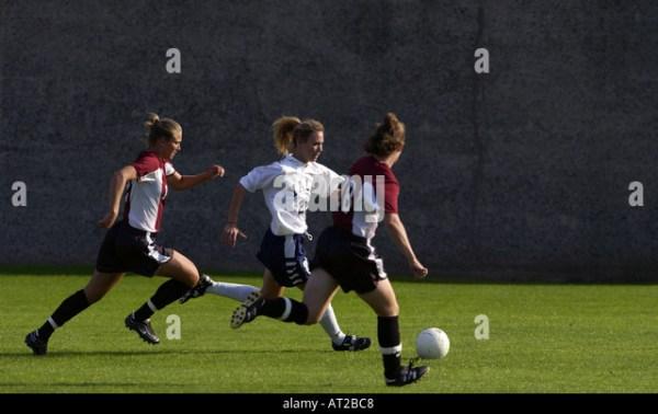 Harvard Yale Football Stock Photos & Harvard Yale Football ...