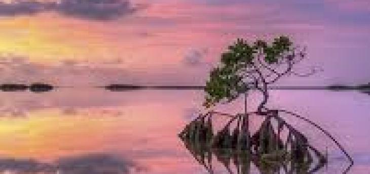Philips Fidelio S2