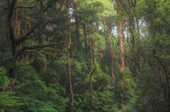 синий цвет в интерьере спальни, сочетание цвета синего в интерьере, интерьер в синем цвете фото, оттенки синего интерьере, интерьеры в синих оттенках