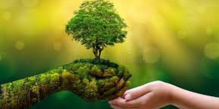 Несмотря на это, психологи выработали несколько методов, которые позволят натренировать ваше внимание.