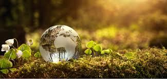 10 фактов о рыбалке и рыбах, о которых вы, скорее всего не знаете.