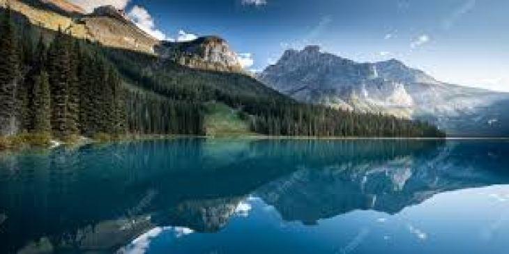 витамины при стрессе для мужчин
