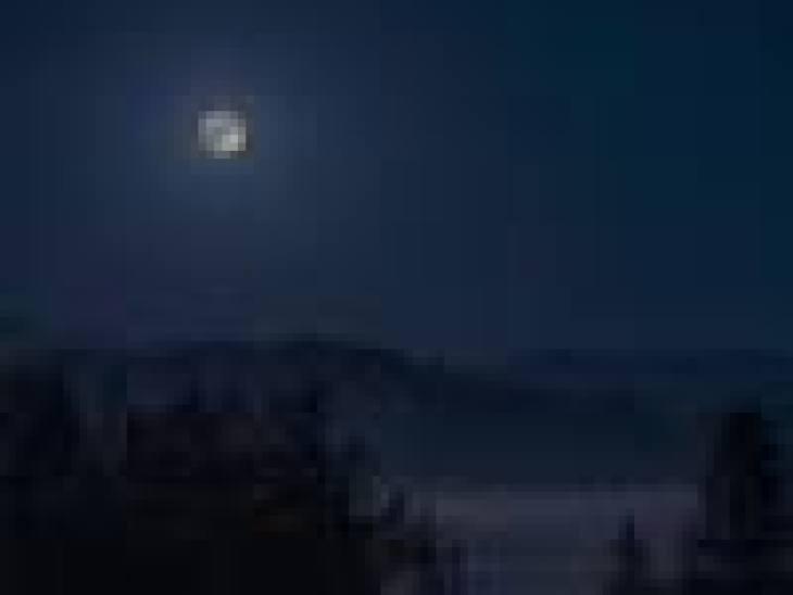 чай курильский свойства, курильский чай когда собирать и как сушить, заготовка курильского чая в домашних условиях, как заготовить курильский чай в домашних условиях