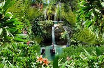 выбор первого автомобиля, первый автомобиль выбор