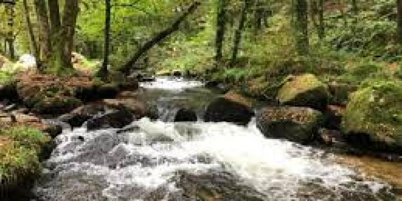 деньги мотивация