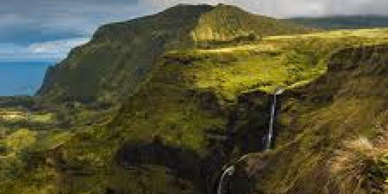 обертывание пищевой пленкой в домашних условиях