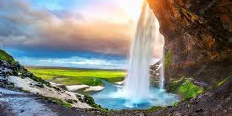 ароматное оливковое масло, сделать ароматное оливковое масло