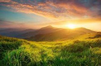возрастное старение, кожи, рук, лица