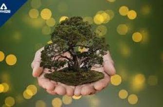 заблуждения женщин о мужчинах