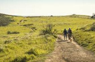 как освежить отношения, с мужем, с парнем, семейные, способы