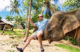 белый чай польза и вред, китайский