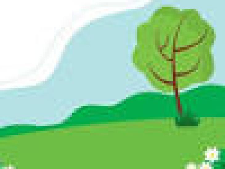 почему человек чихает, часто, нос, организм, солнце