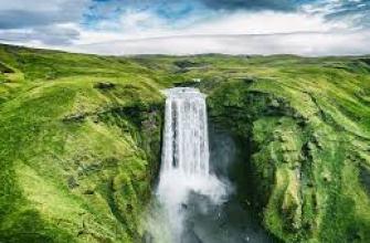 кедровые орехи польза и вред, масло, продукт