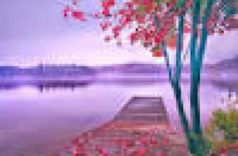 какой стол выбрать ребенку, первокласснику, советы