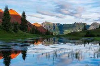 семечки подсолнуха польза, вред, продукт, здоровье, семя состав