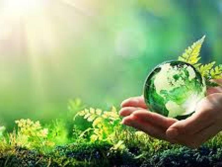 рыбий жир в капсулах для взрослых, принимать, капсула, польза, вред
