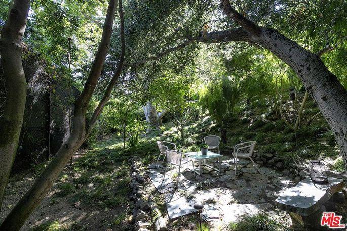 Lush, isolated backyard