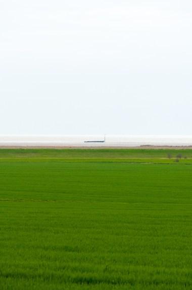 biało zielony pejzaż z barką