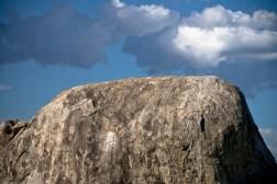 Tanzania-Serengeti_National_Park-028-DSC_5246