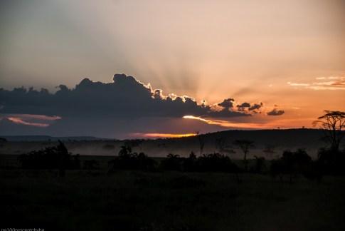Tanzania-Serengeti_National_Park-110-DSC_5744