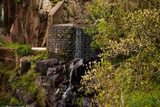 2016-02-08-13-Madeira-DSC_2082