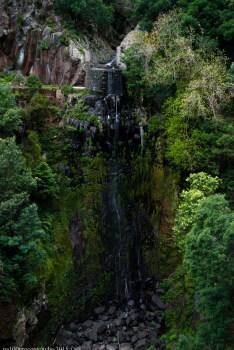 2016-02-08-13-Madeira-DSC_2116