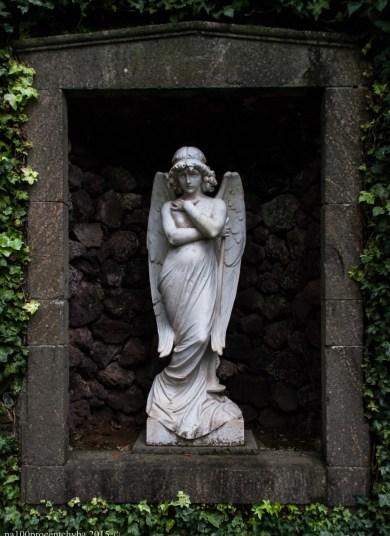 2016-02-08-13-Madeira-DSC_2253