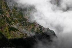 2016-02-08-13-Madeira-DSC_2418