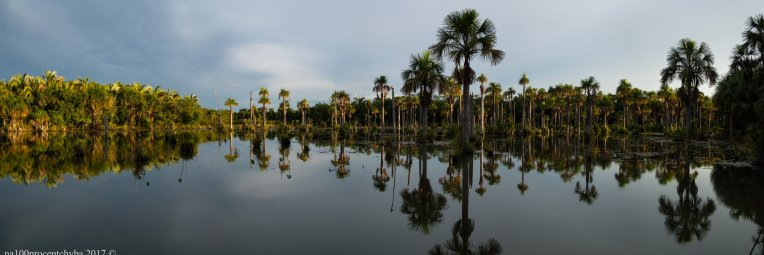 brasil-mato-grosso-cuiaba-lagoa-das-araras-panorama-14-images