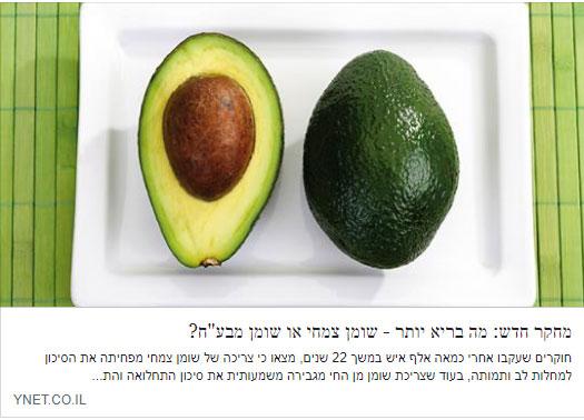 ynet2 - תקשורת