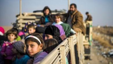 Photo of الهجرة العراقية: عودة أكثر من مليون و350 ألف نازح خلال 2019