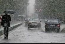 Photo of الأرصاد: غدًا أمطار على السواحل الشمالية.. والصغرى بالقاهرة 11
