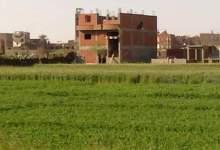 Photo of حملة موسعة لإزالة التعديات بالشرقية